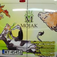 mojak_samochod_tyl
