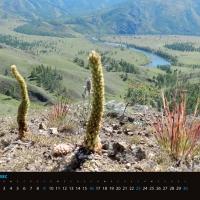 agraf-mongolia-indd_strona_07