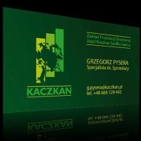 kaczkan_wiz1