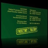 kaczkan_wiz2