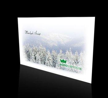 Kartka świąteczna firmy AGROCENTRUM