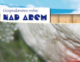 Strona www Nad Arem