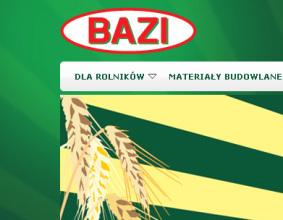 Strona www Bazi