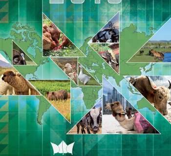 Kalendarz 13-stronicowy Agrocentrum na rok 2013