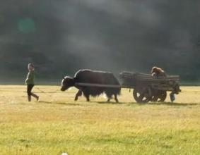 Film z wyprawy do Mongolii- Changaj 2012