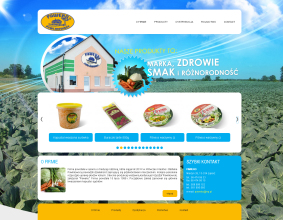Strona internetowa Paweko